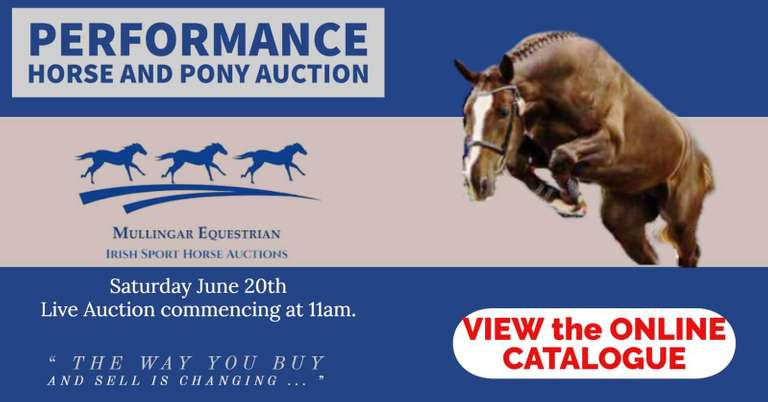 Performance Horse & Pony Sale (3yo+) SATURDAY 20 JUNE