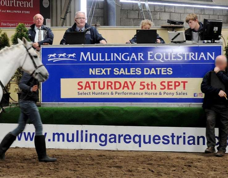 Performance Horse & Pony Sale  SATURDAY 10 OCTOBER