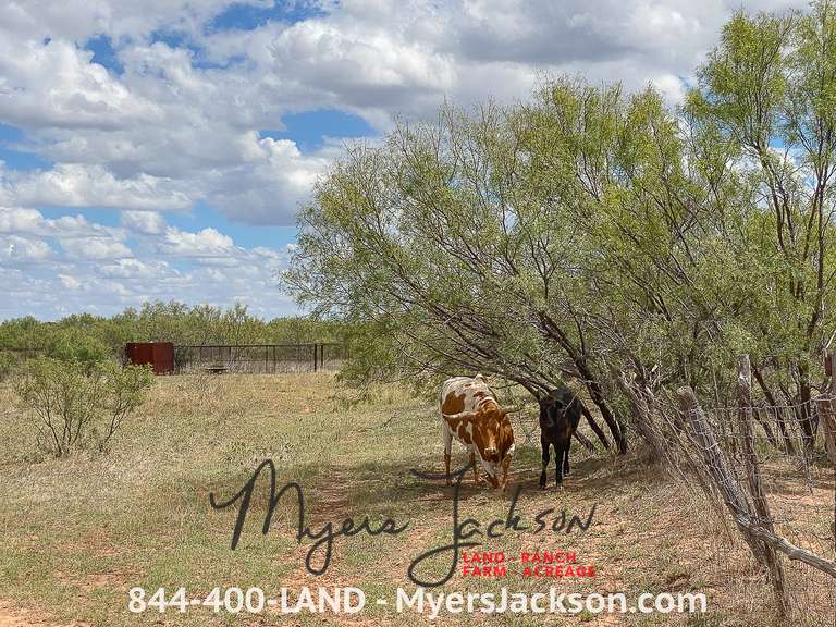 Over One Thousand Acres in Cottle County Texas