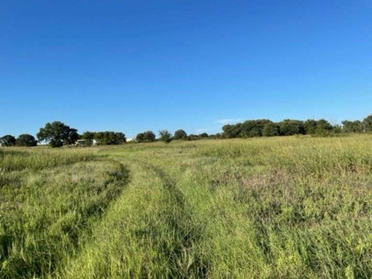 20 Acres of Wooded Land-Wise Co Texas