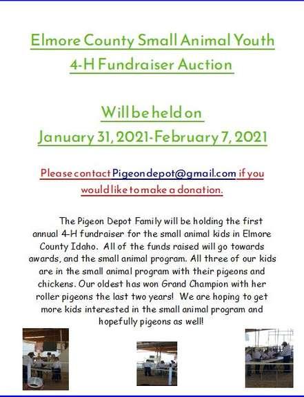 Elmore County Idaho 4-H Fundraiser