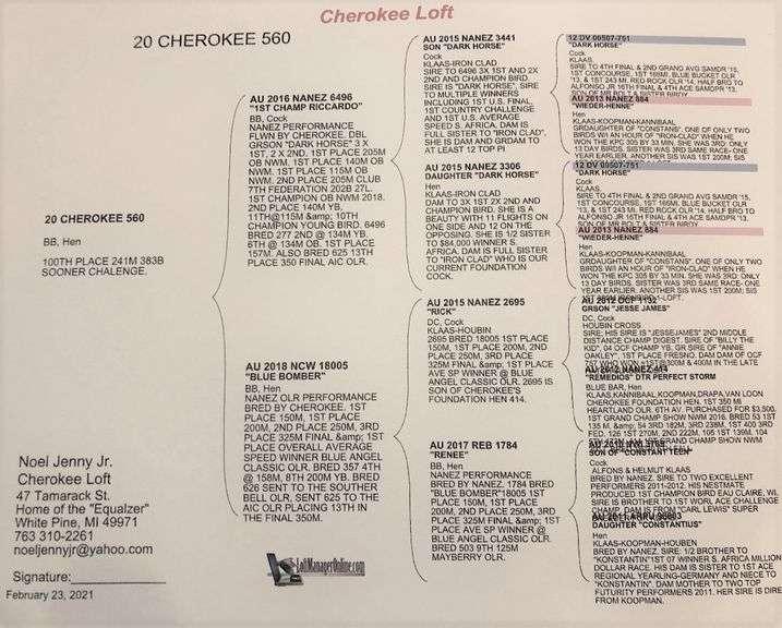 20-CHEROKEE-560 BB H 1st Champ/ Blue Bomber