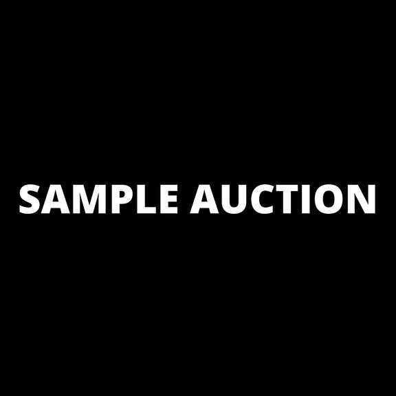SAMPLE AUCTION