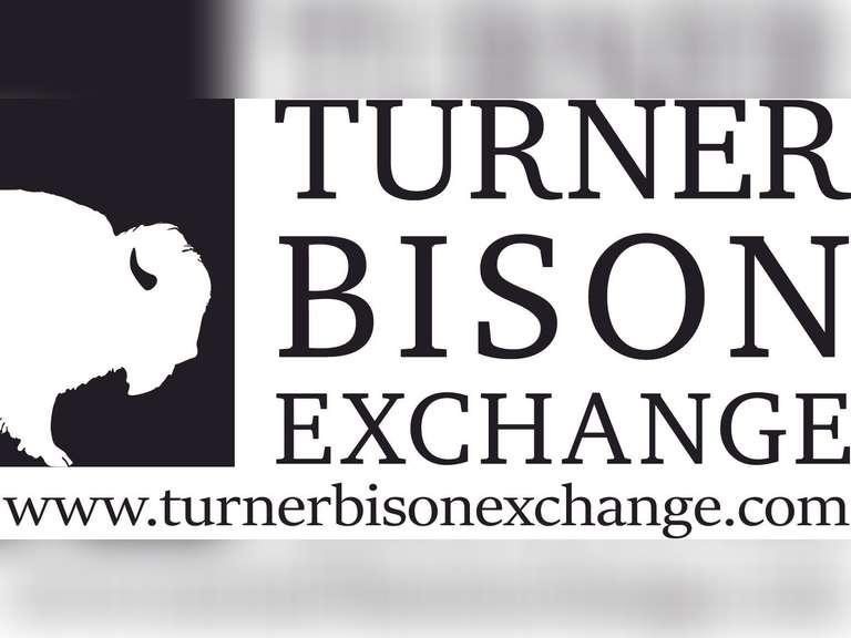 Turner Bison Exchange Prairie Performance Bison Simulcast Auction