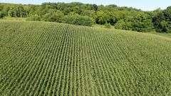 SPRANG COMPLETE FARM DISPERSAL