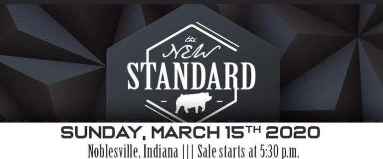 The New Standard Showpig Sale