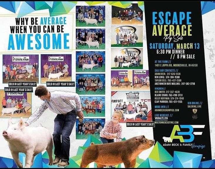 Escape Average