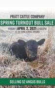Pratt Cattle Company