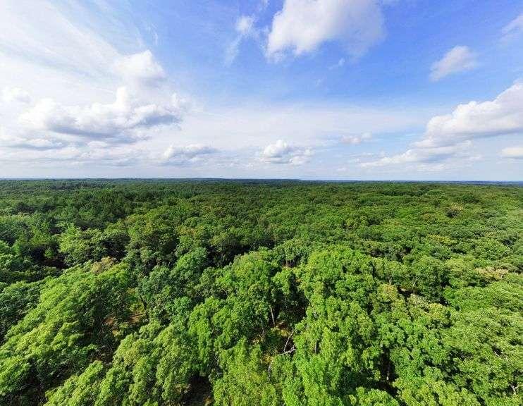 112.88 Acre Franklin County Online Land Auction