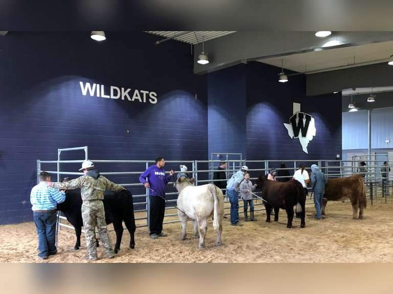 Willis Ag Booster Student Projects (Add-Ons Only)