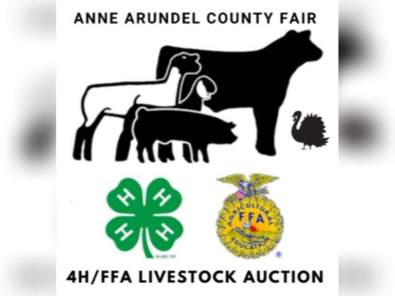 Anne Arundel County 4H/FFA Livestock Auction - Maryland