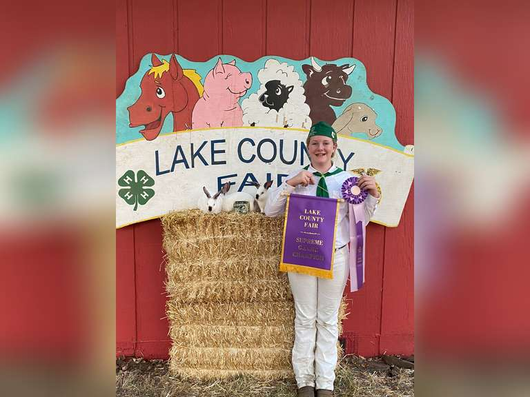 Faith McIntire Scotts Valley 4-H