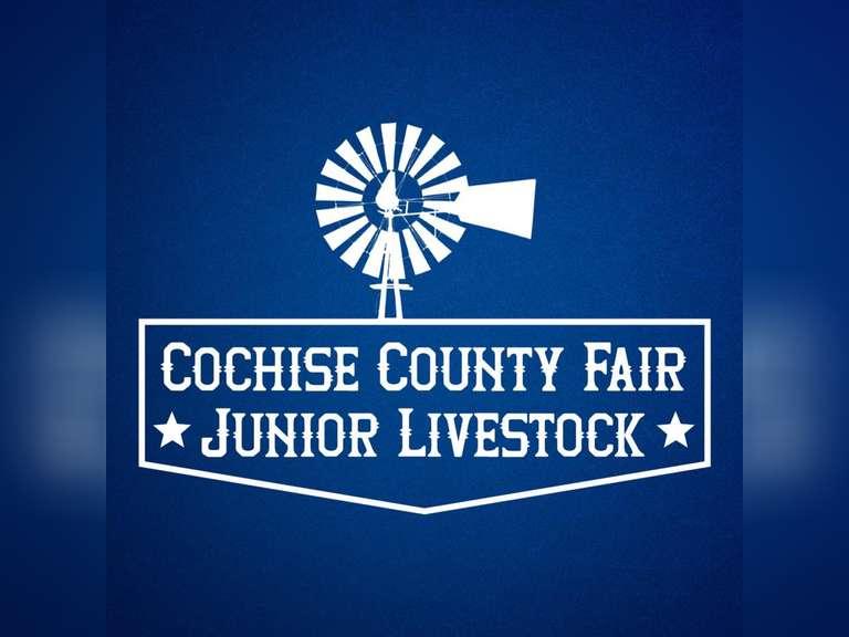 Cochise County Fair Jr. Livestock Auction - AZ