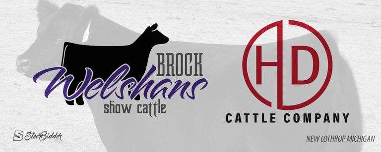 10/16/21 BROCK WELSHANS SHOW CATTLE / HD CATTLE COMPANY