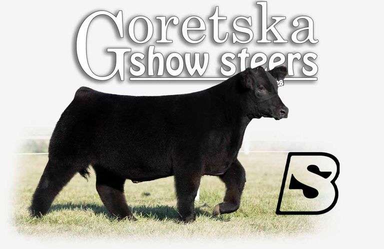 10/23/21 GORETSKA SHOW STEERS