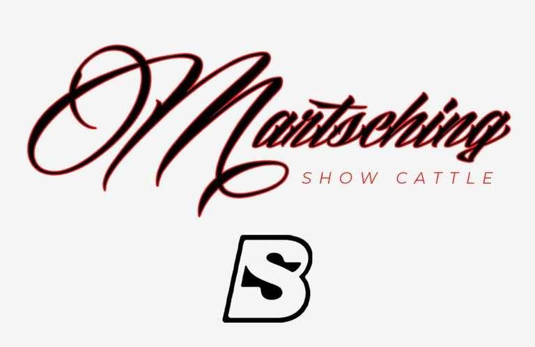 10/26/21 MARTSCHING SHOW CATTLE