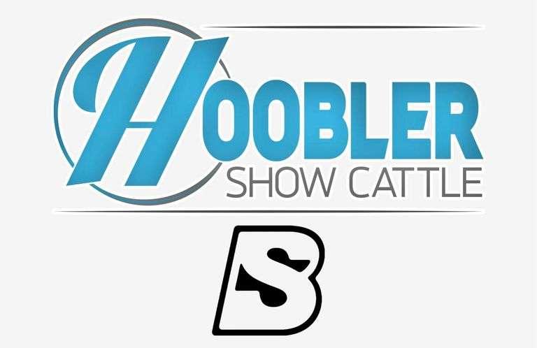 9/19/21 HOOBLER SHOW CATTLE