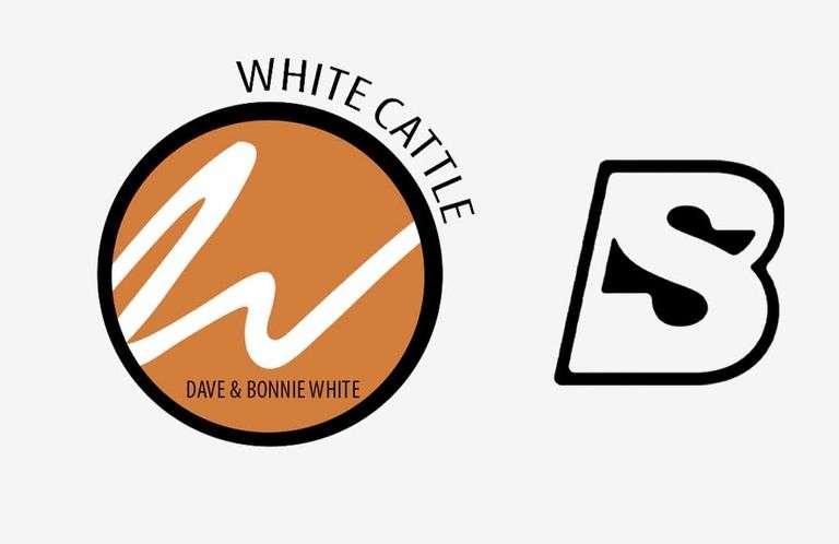 9/20/21 WHITE CATTLE