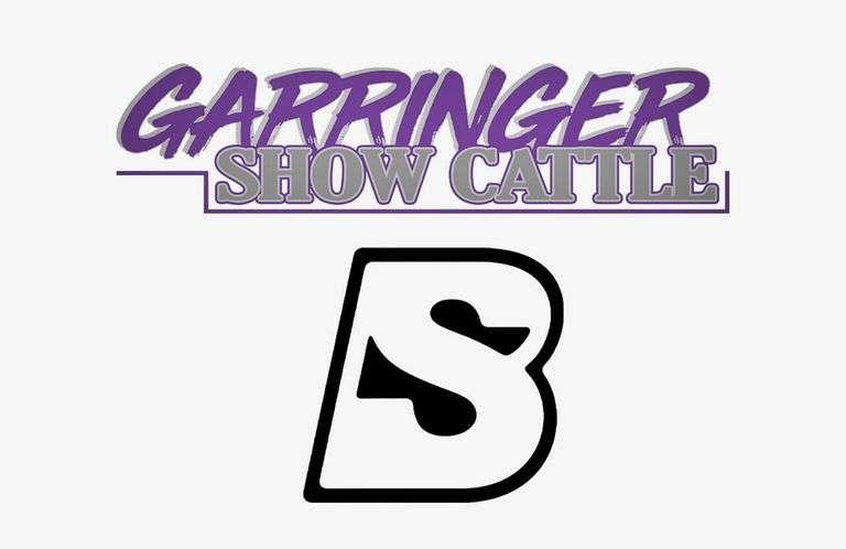 9/12/21 GARRINGER SHOW CATTLE  ::  BID TO WIN.