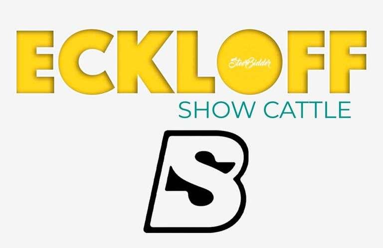 9/19/21 ECKLOFF SHOW CALVES