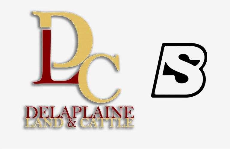 10/21/21 DELAPLAINE LAND & CATTLE