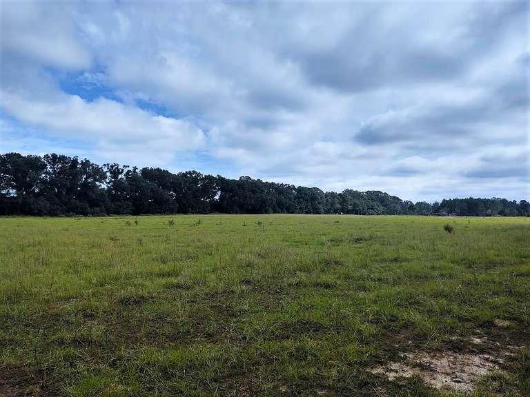 South Georgia Land Auction