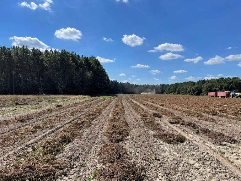 Brooks and Berrien County Land Auction