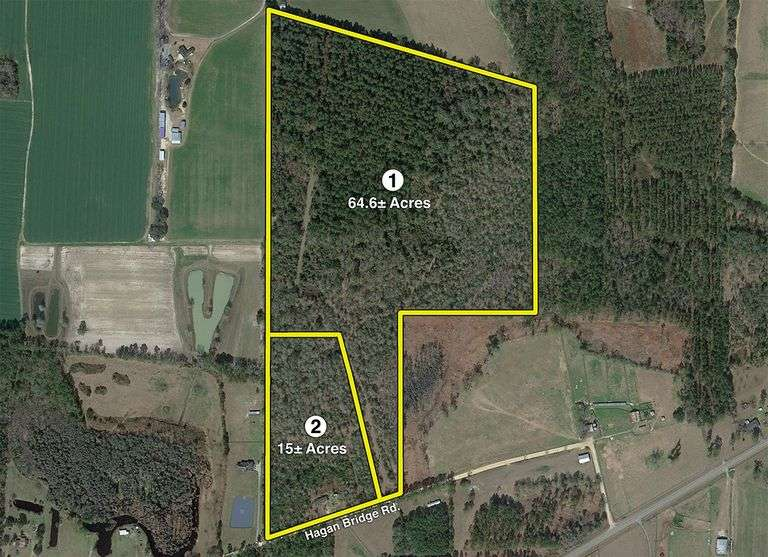 79 acres offered divided, Lowndes County, GA