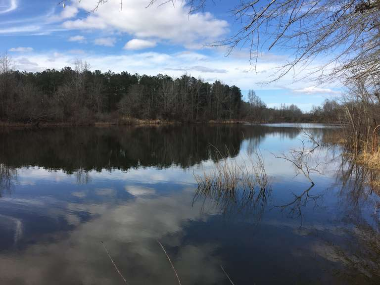 Bird Dog Bay, 130 acres Waynesboro, GA