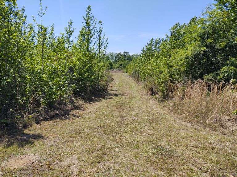 21 acres Bank Owned, Washington County, GA