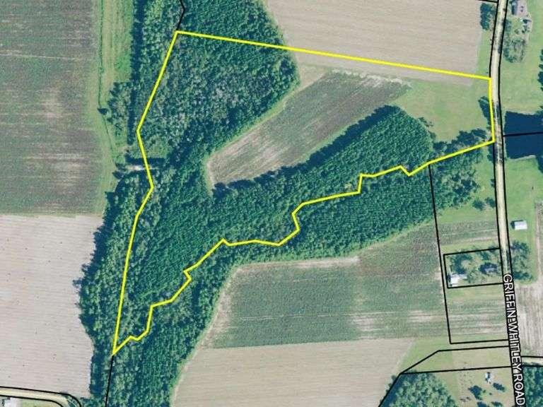 38 acres Berrien County, GA
