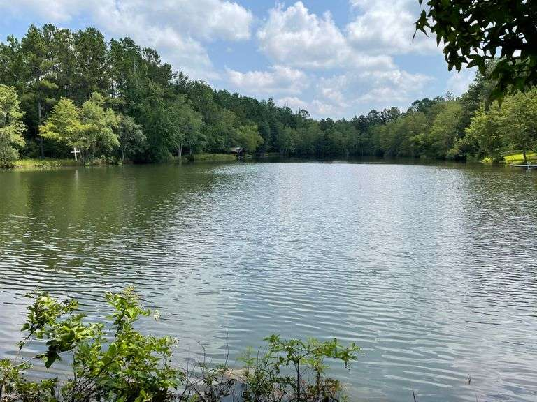 Pierre Place 37 acres in 9 tracts, Swainsboro, GA