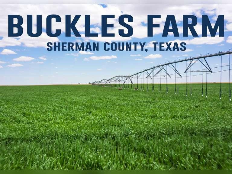 Buckles Farm Absolute, Multi-Parcel Auction