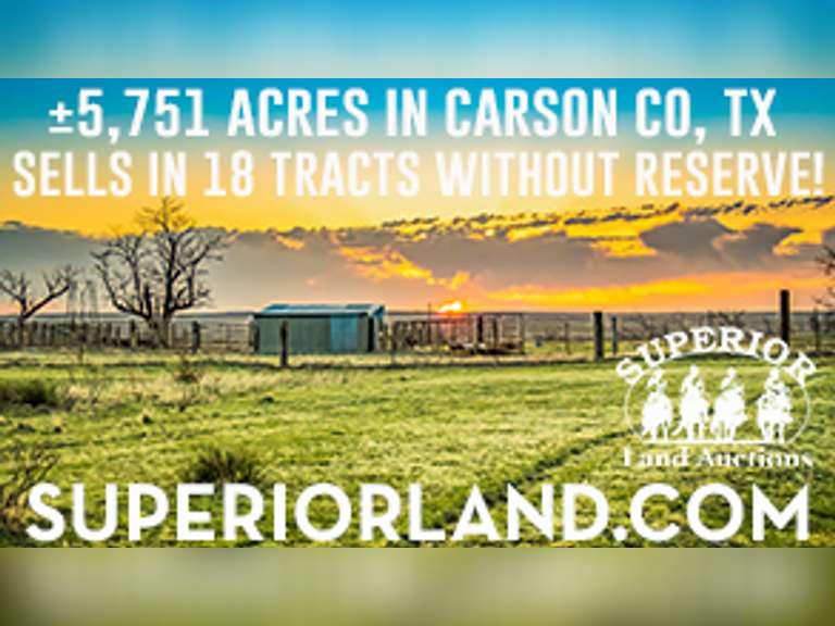 Carson County Online Multi-Par Auction