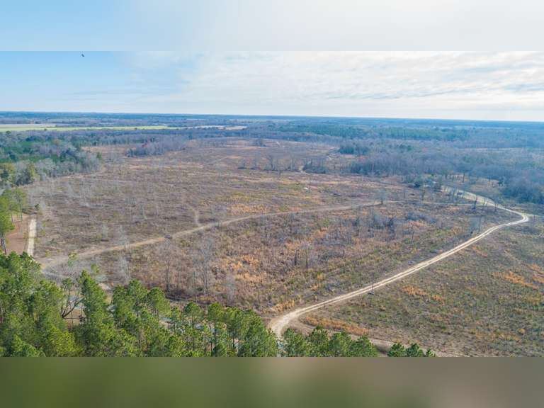 Now Selling Absolute! 347+/- Acres - Turner County, Georgia