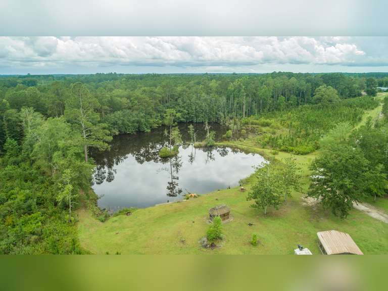 27 Acres with Two Homes, Colquitt County, Georgia