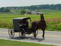 Long Prairie Area Amish Community Benefit Auction